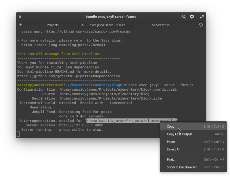 Terminal with context menu